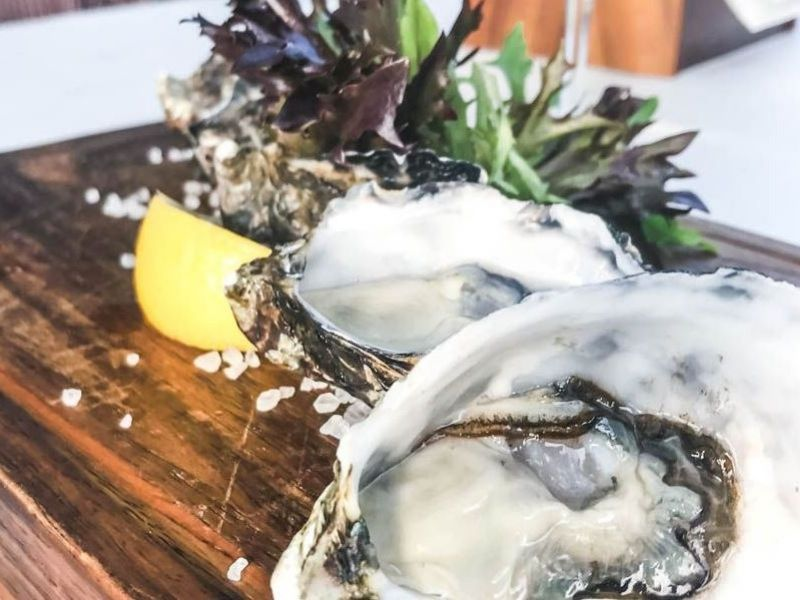 Oysters at The Garden Bar Bistro